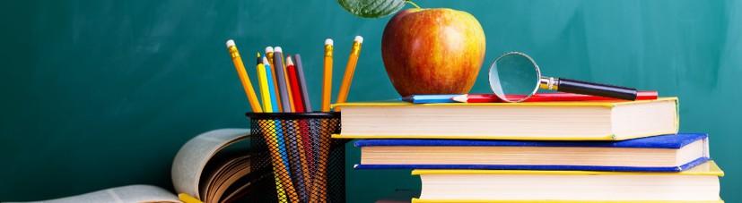 Становление и развитие коррекционной педагогики как науки